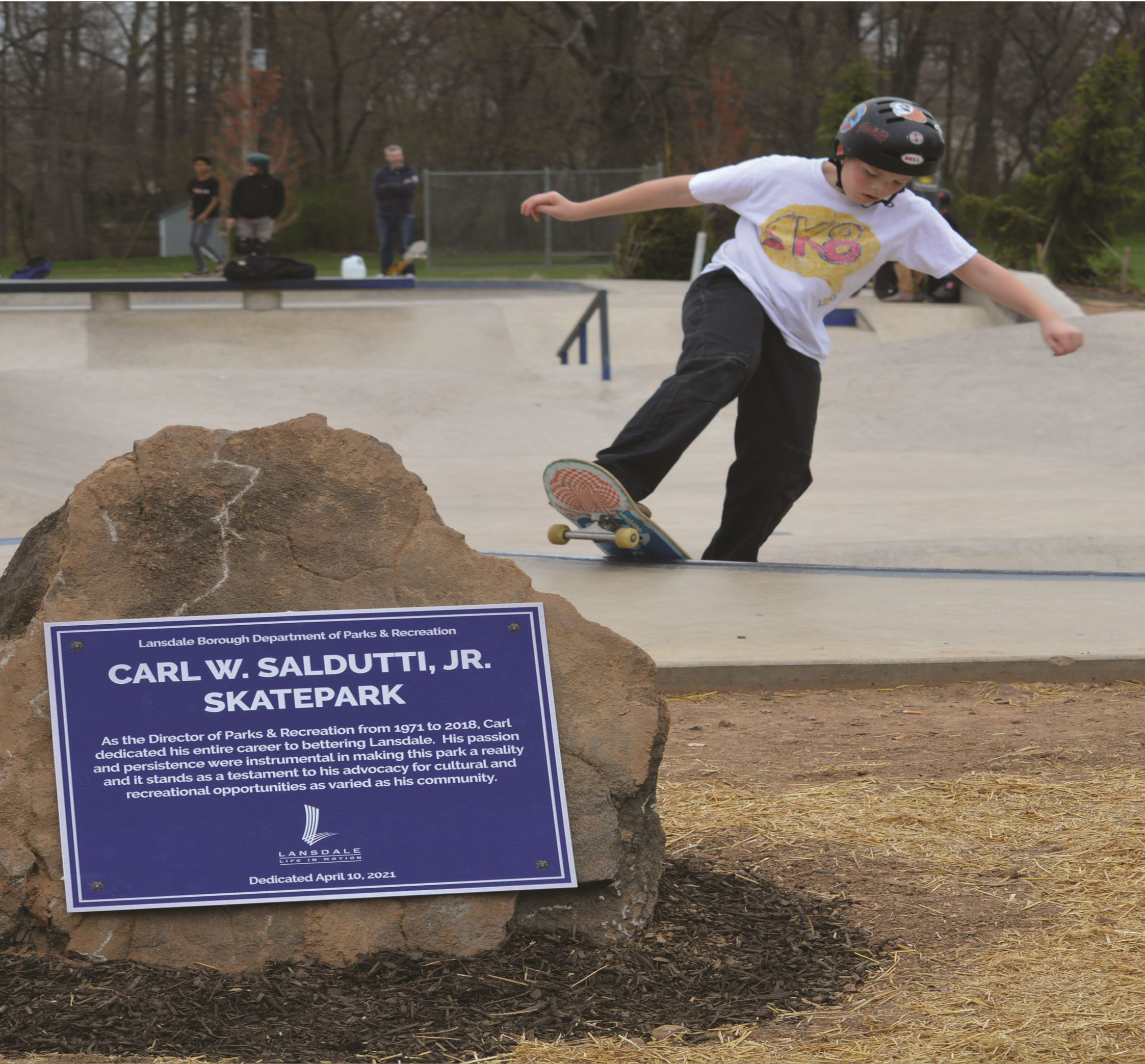Skatepark Dedicated 2021